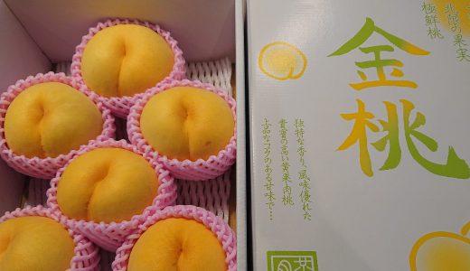 山形県天童市に1万円のふるさと納税をして金桃が届きました☆お値段以上で大満足!
